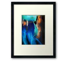 hj945a Framed Print