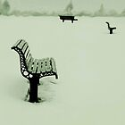 snow bench by lastgasp
