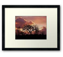 Devon Sunset Framed Print
