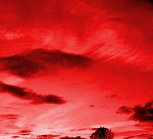 Scarlett Sky by Matt Sibthorpe