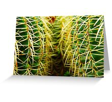 Prickly pair Greeting Card