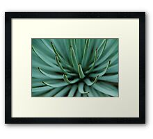 Spike Framed Print