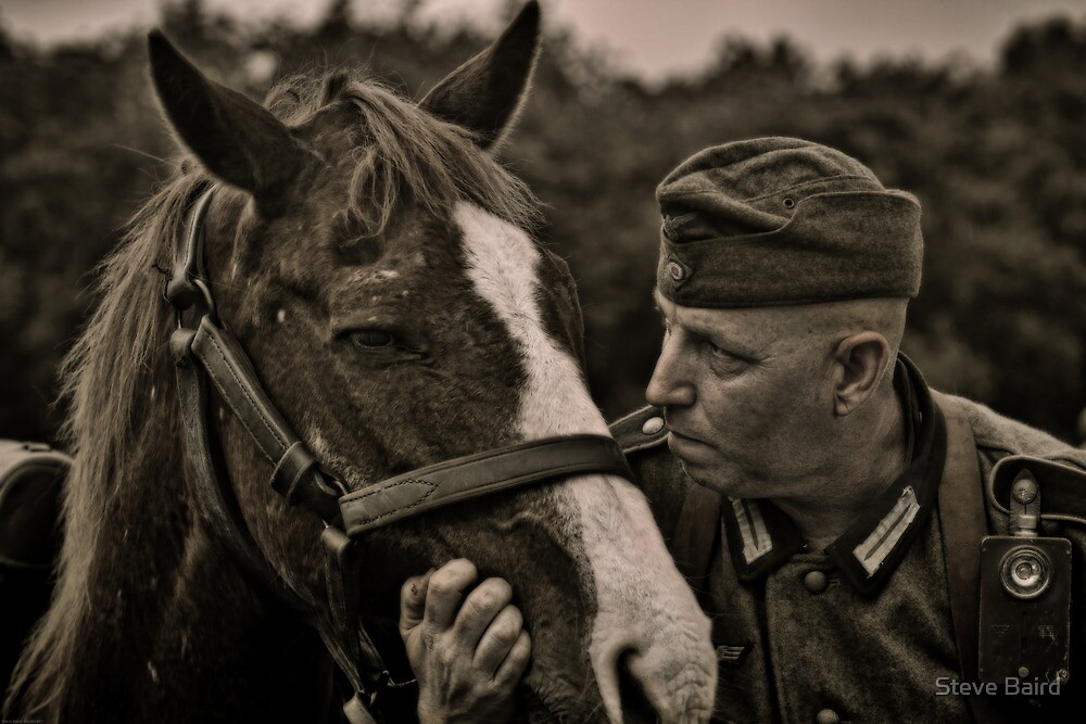 Horse Whisperer by Steve Baird