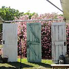 Doors Set the Stage Pistachio Orchard Wedding by Sandra Gray