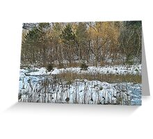 Stream in Winter Greeting Card