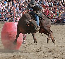 Bull Riding by Turtle6