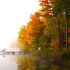 Autumn myst by photogaet