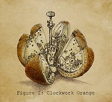 Clockwork Orange by Eric Fan
