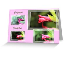 Gorgeous Gladiolus Greeting Card