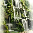 Waterfall by Sally Barnett