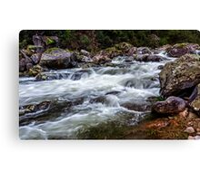 Trickle to a Torrent Canvas Print