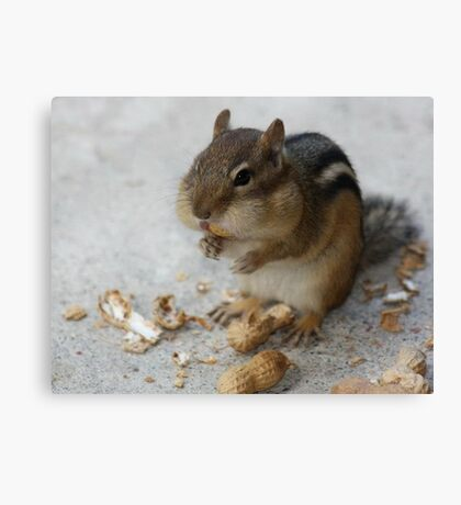 OMG! These are so good! Canvas Print