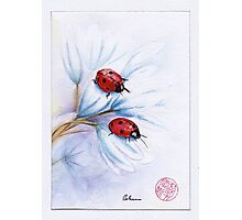 """companions""  ladybugs mixed media painting - watercolor, ink, colored pencil Photographic Print"