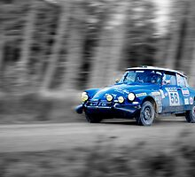 Citroen SM Bandama Rally Car(splash of colour) by Thomas Gelder