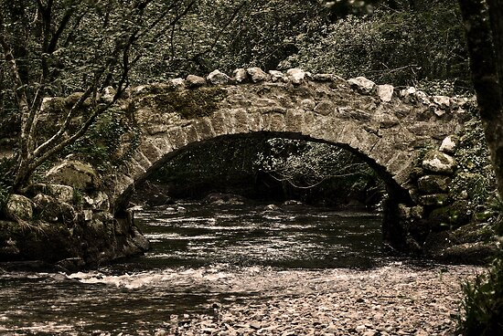 Teign Bridge by Country  Pursuits