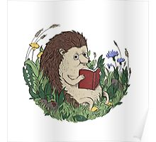 Hedgehog Reading A Book Poster