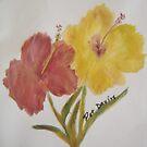 Hibiscus in Acrylics by librapat