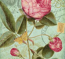 French Rose Bloom & Ephemera - French Script - Vintage Rose Notecard by traciv