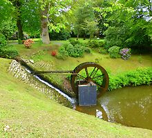 The Water Wheel by Fara