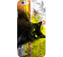 Cat Face III iPhone Case/Skin