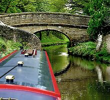 A snake bridge on the Macclesfield Canal, Cherhire, UK......! by Roy  Massicks