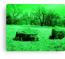 Neon Green Boulders Canvas Print