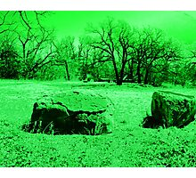 Neon Green Boulders Photographic Print