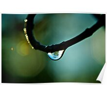 Water Droplet Poster