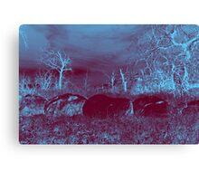 Midnight Blue Canvas Print