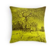 Fine Art Illusion Throw Pillow