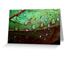 Rain Drop Greeting Card