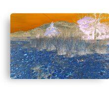 Mountain Bizarre Canvas Print