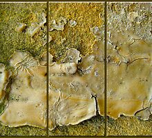 Mold 1, Grunge Fun by Peter Stratton
