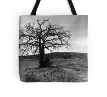 Tilted Tree Tote Bag