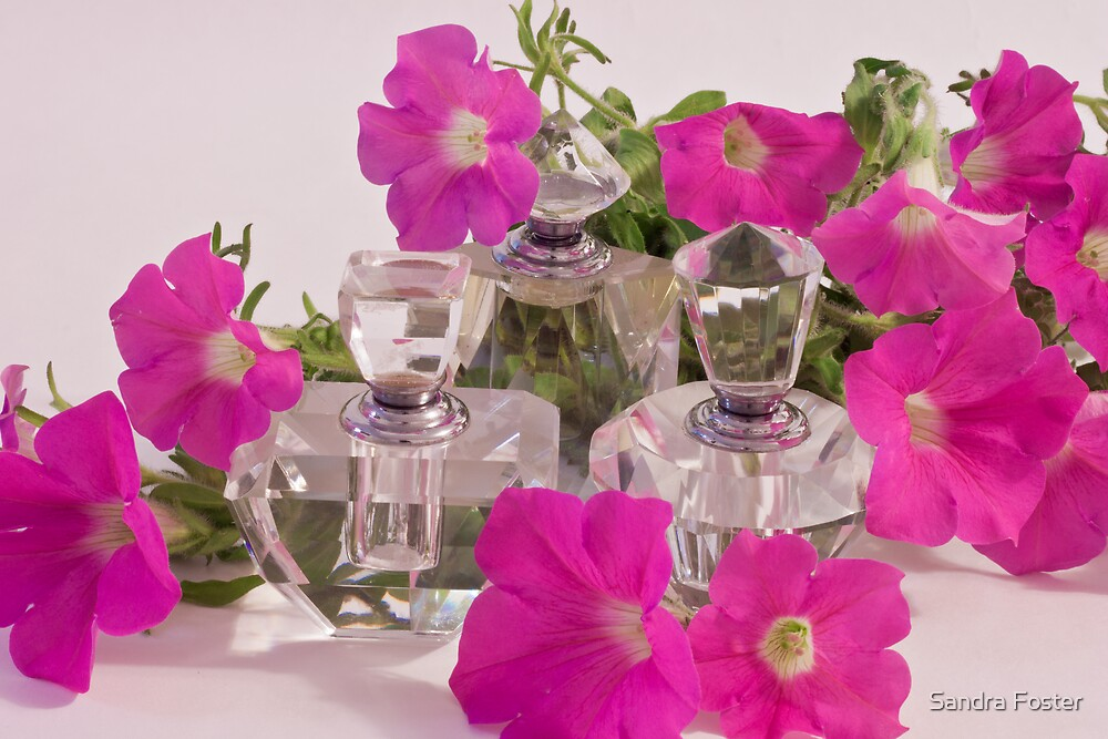 Petunias And Perfume  by Sandra Foster