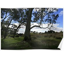 Vistas at every corner,Clare Valley,S.A. Poster