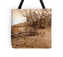 Sepia Landscape Tote Bag