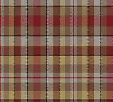 02586 York County, Pennsylvania E-fficial Fashion Tartan Fabric Print Iphone Case by Detnecs2013