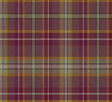 02587 Jefferson Parish, Louisiana E-fficial Fashion Tartan Fabric Print Iphone Case by Detnecs2013