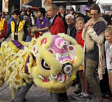 Lion Dance  by Andrew  Makowiecki