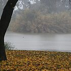 A little foggy at Lake Weeroona by Lozzar Landscape
