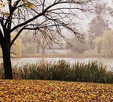 Autumn Fog by Lozzar Landscape