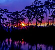 Bush Fire Sunset by Paul Campbell Psychology