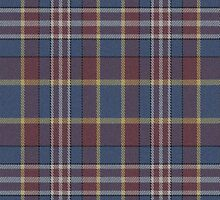 02590 Prince William County, Virginia E-fficial Fashion Tartan Fabric Print Iphone Case by Detnecs2013