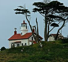 Battery Point Lighthouse by Barbara  Brown