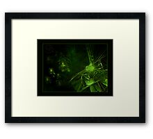 ©DA Mr. Bee Fractal Alien I Framed Print