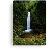 The Great Gads... Falls Canvas Print