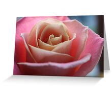 colourful rose Greeting Card