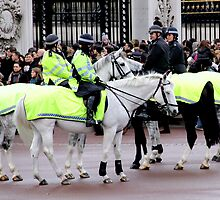 Mounted police by magiceye