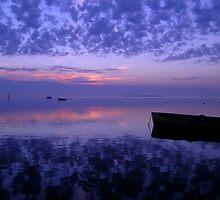 Swan Bay, Victoria by stevenwells